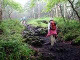 岩場の道を登っていく